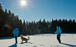 wandern-winter-neureichenau
